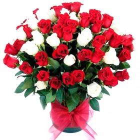 Champagne Undurraga para Agregar