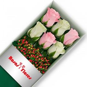 Caja de Rosas Blancas 12 Rosas