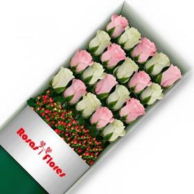 Caja de Rosas Blancas 25 Rosas