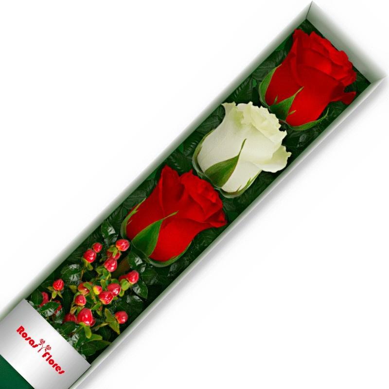 Caja de Rosas Blancas 12 Rosas + Globo y Peluche