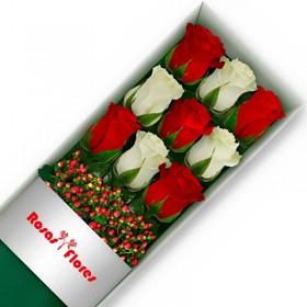 Caja de Rosas Blancas 24 Rosas + Globo y Peluche