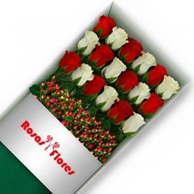 Caja de Rosas Rosadas 6 Rosas