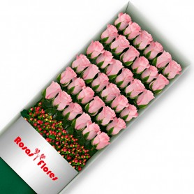 Caja de Rosas Rosadas 36 Rosas