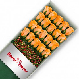 Caja de Rosas Damasco 20 Rosas