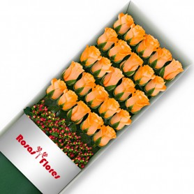 Caja de Rosas Damasco 25 Rosas