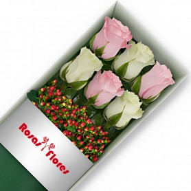 Caja de Rosas Color Mix Rosado Blanco 6 Rosas