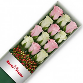 Caja de Rosas Color Mix Rosado Blanco 12 Rosas