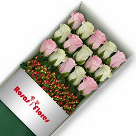 Caja de Rosas Color Mix Rosado Blanco 15 Rosas