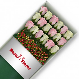 Caja de Rosas Color Mix Rosado Blanco 18 Rosas