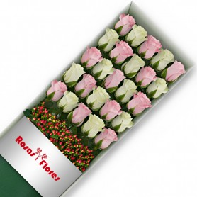 Caja de Rosas Color Mix Rosado Blanco 24 Rosas