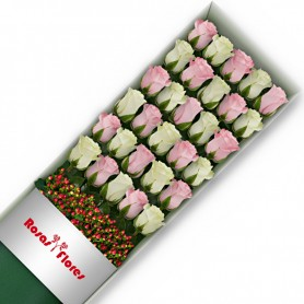Caja de Rosas Color Mix Rosado Blanco 30 Rosas