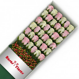 Caja de Rosas Color Mix Rosado Blanco 36 Rosas