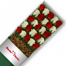 Caja de Rosas Color Mix Rojas Blancas 24 Rosas