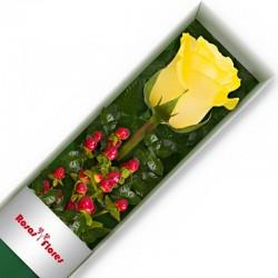 Caja rosas amarilas